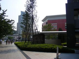 DSCN4433.jpg