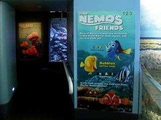 nimo'sfriends.JPG